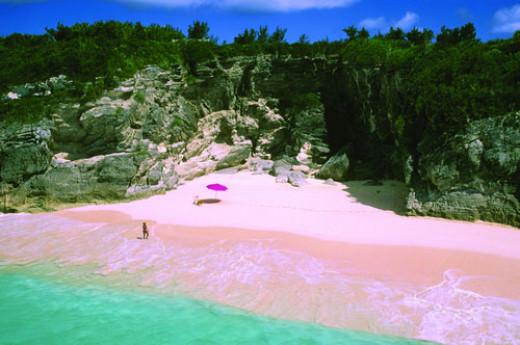 pink sand in Bermuda