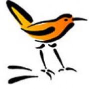 nancoix profile image