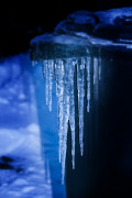 Ice Storm Blues: Winter Memory Writing Challenge