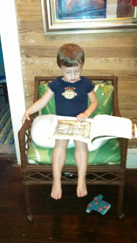My grandson age 3 has fallen in love with books.   Reading to him and allowing him to read back to you builds that love for the printed word.