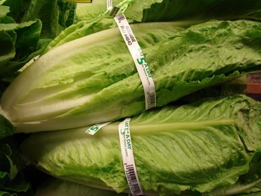 Romaine Lettuce are much healthier than Iceberg.
