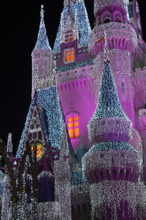 Everything is coming up FROZEN these days at The Magic Kingdom at Walt Disney World. This is a close-up of the icing on Cinderella's Castle during Thanksgiving Week.