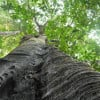 likepage profile image