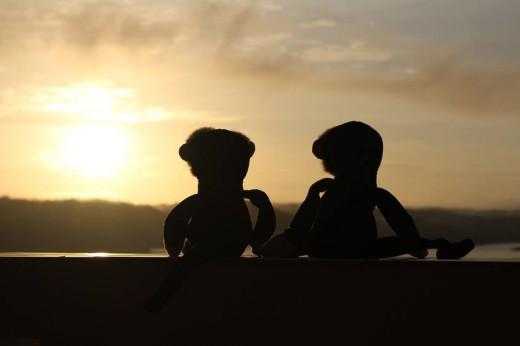 Two Mooches enjoying the sunrise in Flores, Guatemala.