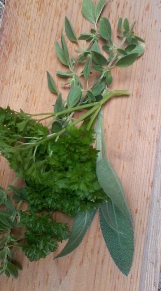 Fresh parsley , sage and marjoram