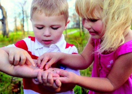 Toddlers with a Ladybug