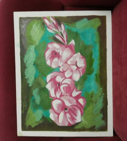 Pink Gladioly