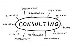 The Consultant Advantage