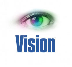 What is Vision in business and elements of vision