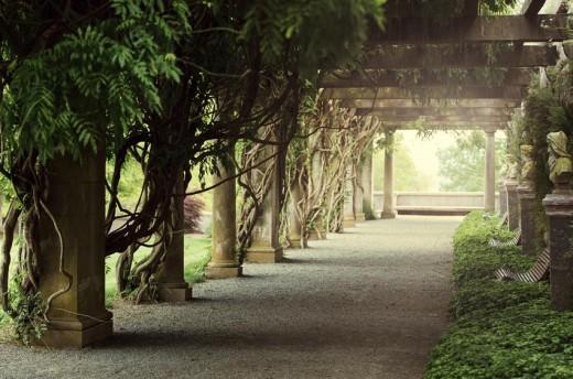 Pergola Walkway at Biltmore