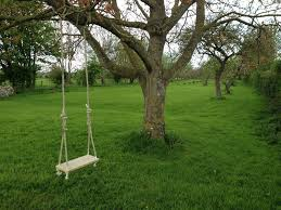 A swing tied to a tree branch is a typical swing that can be built easily in the countryside, this was one of the activities that when I was young would attract my attention. It was a welcome break from our farm boring life.