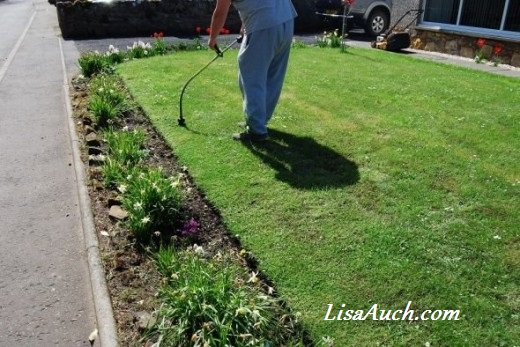fuel driven weedeater strimmer- The BEST garden tool perfect for creating neat edges quickly and easily in your garden