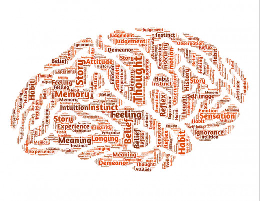The words printed on the brain figure above are not necessarily linked to the area of the brain on which they appear.