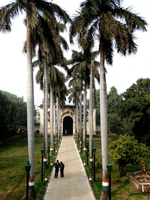 The Palm tree-lined path to the main mausoleum