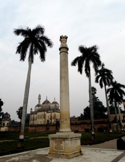 Ashoka Pillar in the gardwen