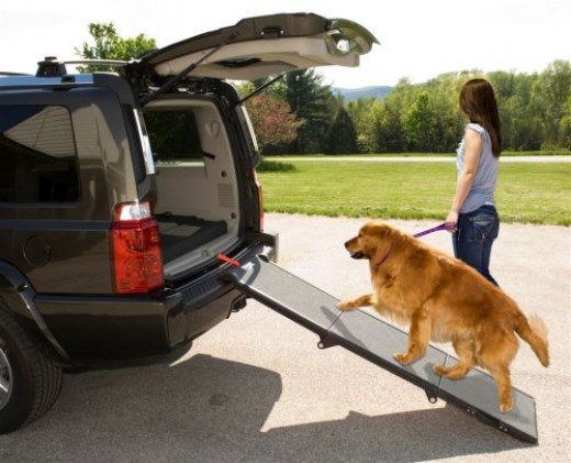 Pet Gear Tri-Fold Pet Ramp for cats and dogs up to 200-pounds