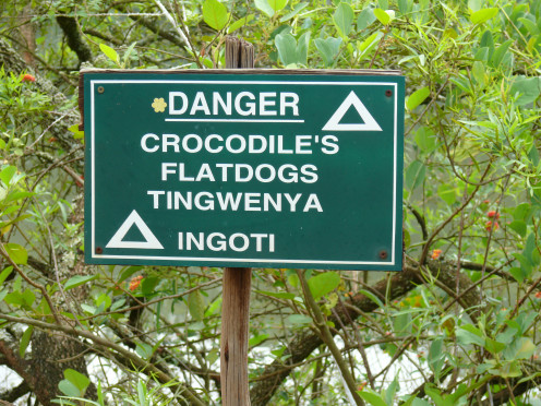 Beware of the Crocs-stay away from the water!
