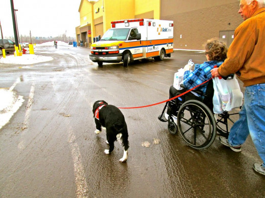 """The ambulance stops  at a safe distance until Hunter has crossed """"from curb to curb"""" with his people safely."""