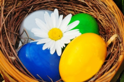 Blog Mutt: The Newest Egg in My Freelance Writing Basket