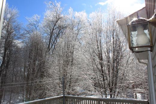 it's a winter wonder land!
