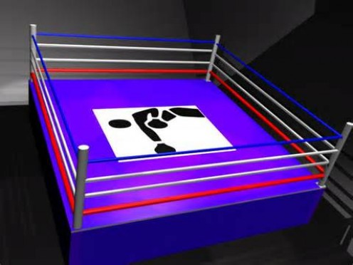 The boxing ring has four posts and four ring ropes. Rings measure anywhere from 16 feet to 24 feet X 4.