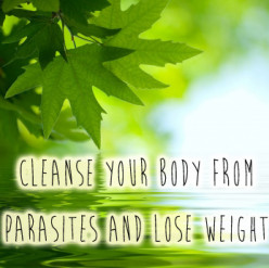 Cleanse Your Body From Parasites And Lose Weight