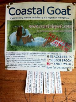 The Coastal Goat: Sign Found on Roberts Creek Community Board