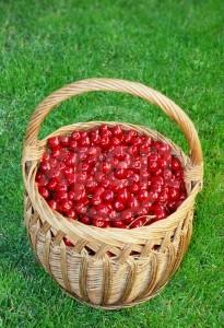 Is Bing a bowl of cherries?