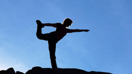 Yoga means taming the mind-body Complex that makes a person.