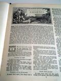Genesis: Our Modern Human Origin Story