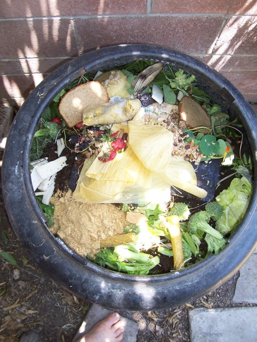All the food waste goes into the mulch bin.
