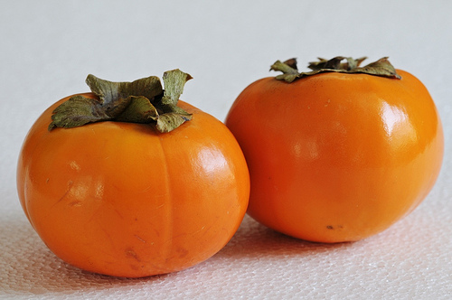 These are modern persimmons, freshly harvested and still retaining the green calyx where they were removed from the branch.