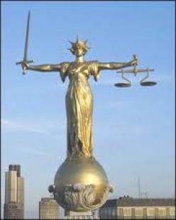 Weird, Stupid and Gross Laws part 2