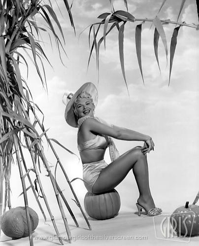 The gorgeous Hollywood legend: Barbara Nichols