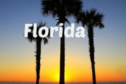 20 Reasons Not to Move to Florida