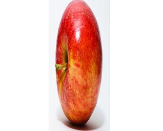 An apple with a terrible aspect ratio.
