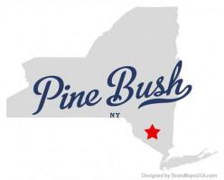 Pine Bush, NY