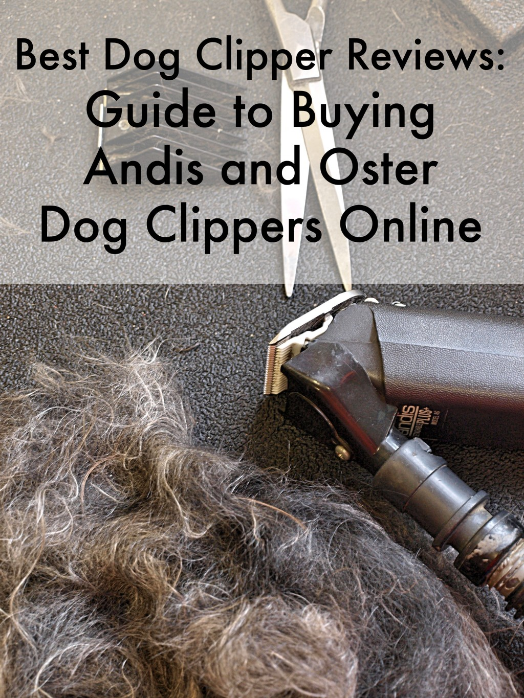 Guide To Buying Andis And Oster Dog Clippers Pethelpful