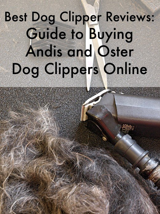 A guide to the best Andis and Oster dog clippers.