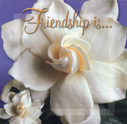 "Friendship – 40th Word in the ""Good Words"
