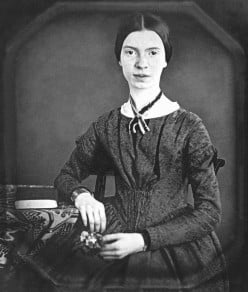 Emily Dickinson and consciousness