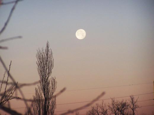 Moonlight so bright, within the darkest night...