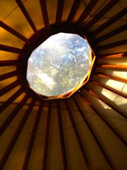 Revitalizing Spirit: My Chumash Indian Dream
