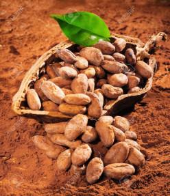 5 Health Benefits of Dark Chocolate