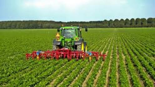 Fertilizing the crop