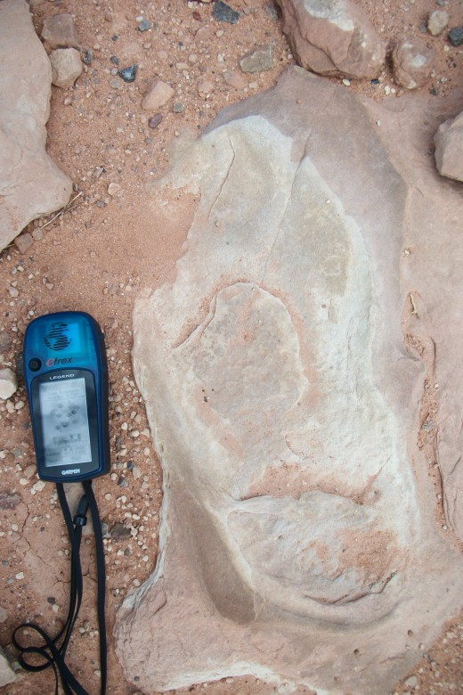Human imprint close by the Dilophosaurus. Do you think the mud stayed wet and plastic for a milion years? But still held the dino print? Seriously?