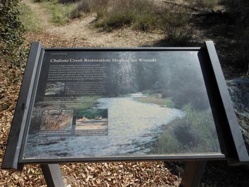 Chalone Creek Restoration, Pinnacles National Park