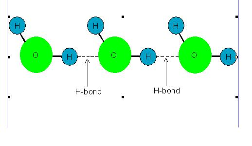Dotted line shows hydrogen bonds among the molecules of water.