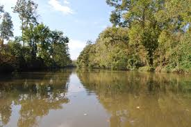 Bayou Teche.  Fictional home and business place of Dave Robicheaux
