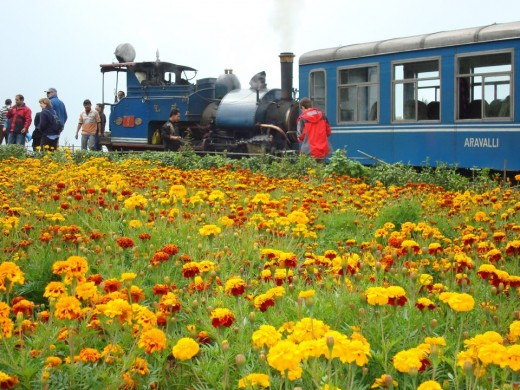 Toy Train at Darjeeling Hill Station in India